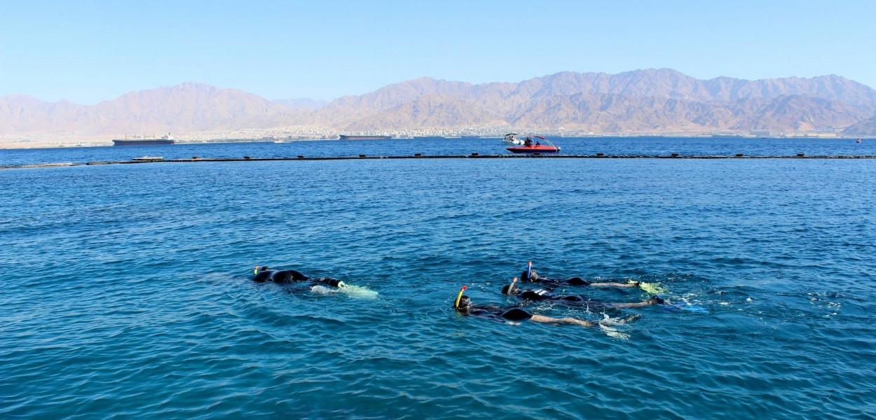 Esnorqueleando con los delfines, Eilat por Yehuda Chamorro