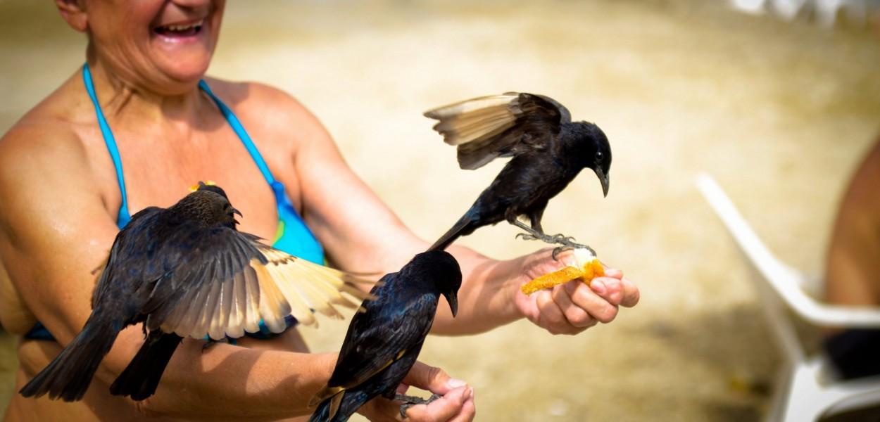 Dead Sea friends por Nir Barav